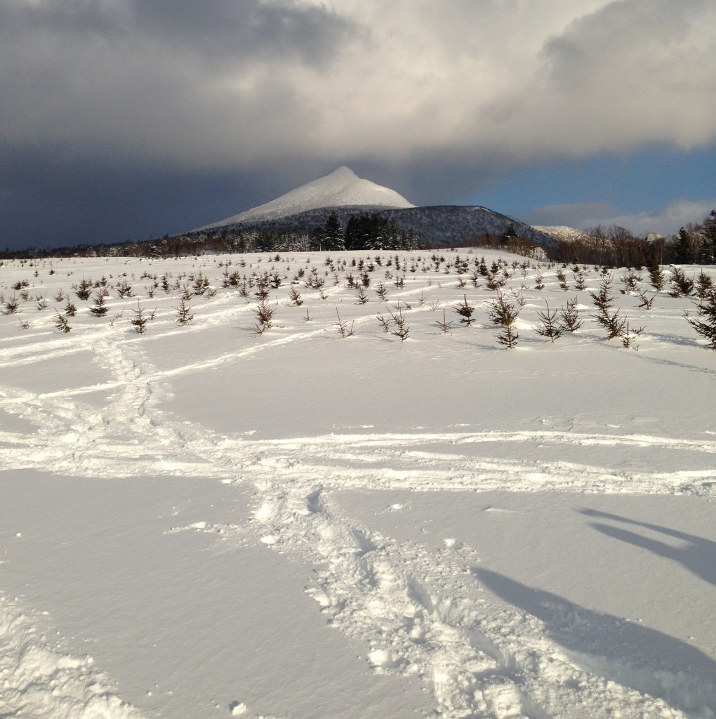 The beautiful peak of Mt. Tokushunbetsu suddenly makes an appearance from behind the clouds.