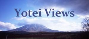 yoteiviews