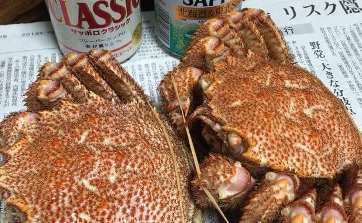 毛ガニ Hairy Crab