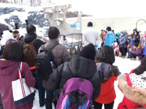 Then enjoy the penguin show! You can see them ` 11 am & 2 pm.